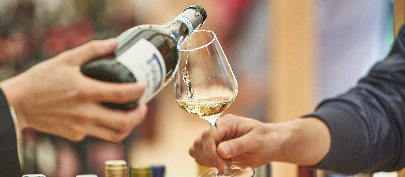 I vini bianchi delle Langhe