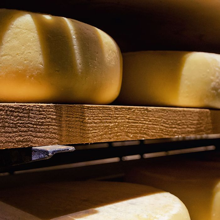 Workshop: cheese and local wines – Ripened cheese