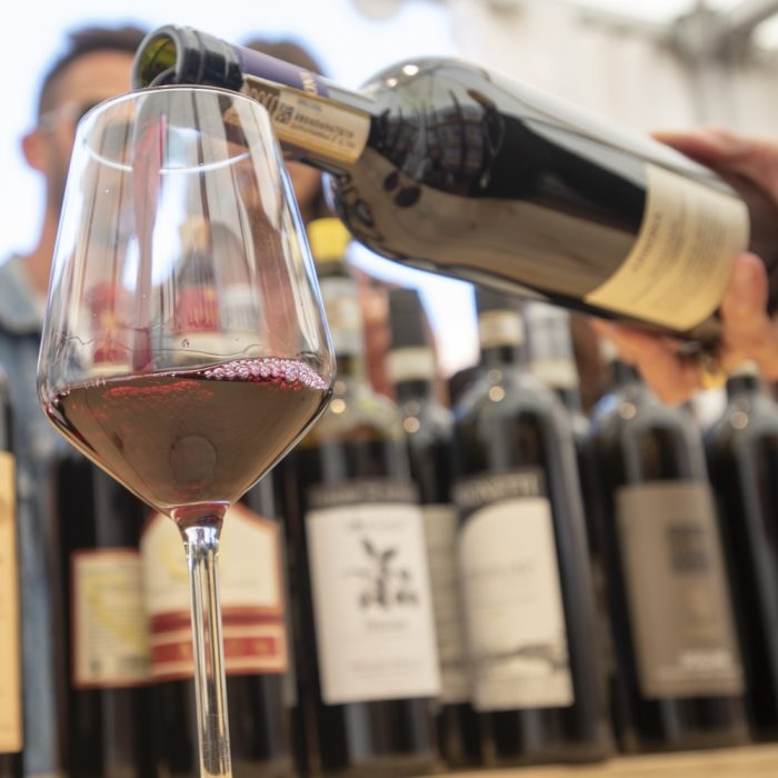 I Nebbioli Alto Piemonte, la Freisa di Chieri e i vini DOC della Collina torinese